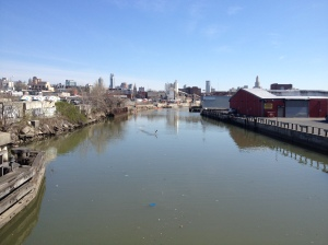 Wildlife of the Gowanus Canal.